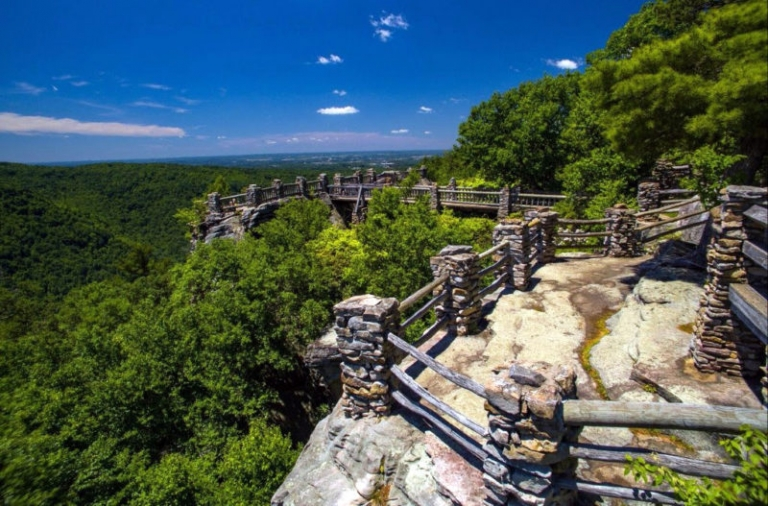 Migratory Bird Day being celebrated May 13 at Coopers Rock