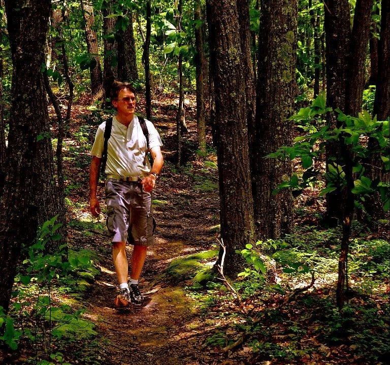 Saturday birding hikes return to Kanawha State Forest