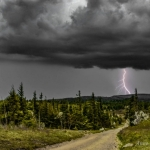 Lightning on Dolly Sods. Photo courtesy Anne Johnson
