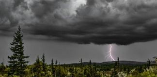 Lightning on Dolly Sods. Photo courtesy Anne Johnson