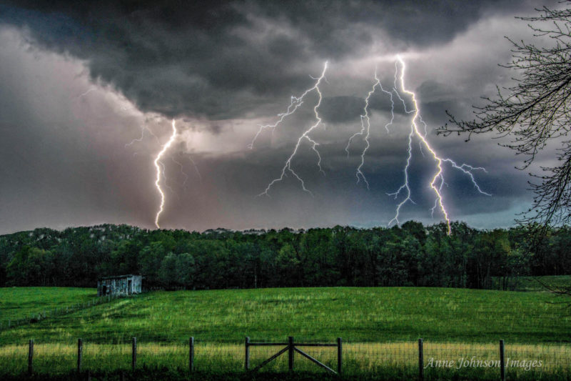 Lightning strikes beyond a pasture in central West Virginia. Photo courtesy Anne Johnson.