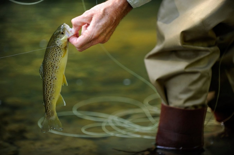 W.Va. officials gear up for free fishing weekend June 10-11