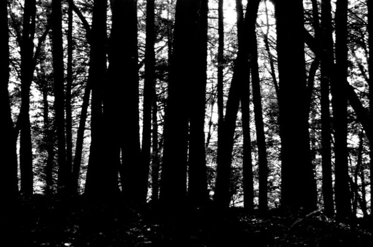 Strange haunting near Summersville Lake may be largely forgotten