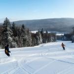 Snowshoe Skiers