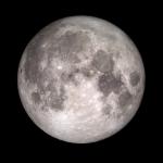 Wolf Moon of West Virginia