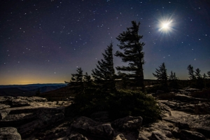 The moon burns brilliantly in the cold darkness above Dolly Sods