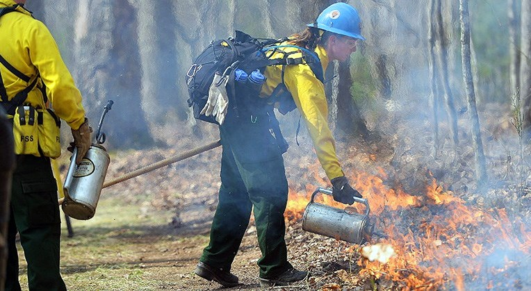 National Park Service staff manage a prescribed burn at the New River Gorge.