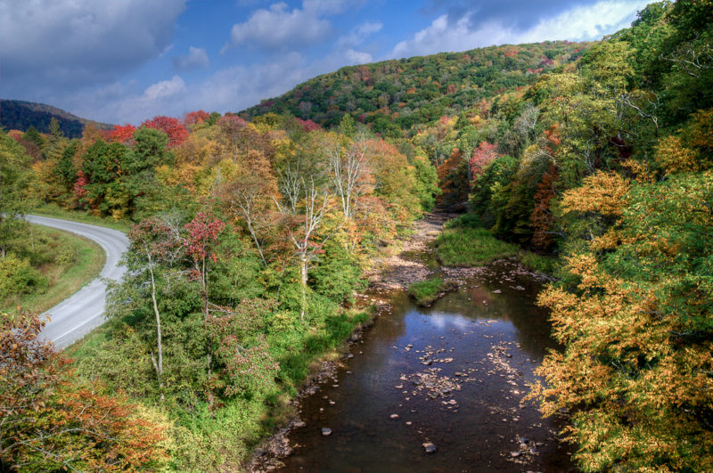 The Williams River edges along the Highland Scenic Highway in Pocahontas County.