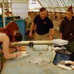 Slanesville students help restore trout population
