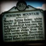 Marker on Horsepen Mountain raised to commemorate penning of horses by Boling Baker.