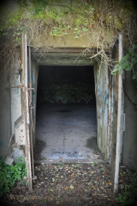 TNT bunkers at the McClintic Wildlife Management Area now hold fans of Mothman transfixed.