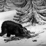 """The bear suddenly came down on the hunter's chest and as he did so, Bill caught him by the scruff of the neck and hacked with his knife until he was able to pierce the animal's brain."""