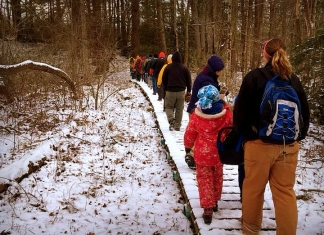 Hikers cross a boardwalk through a marsh near Beckley, West Virginia. Photo courtesy Active SWV.