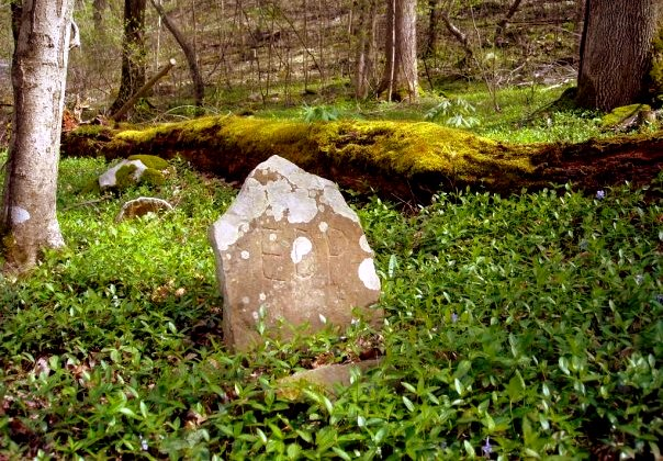 Country cemeteries in W.Va. were once shady retreats