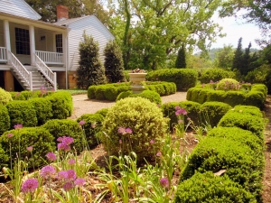 Scented boxwood hedges create form in the gardens at the Craik-Patton House.