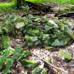These rocks appear to have been stacked, according to archaeologist Charity Moore.