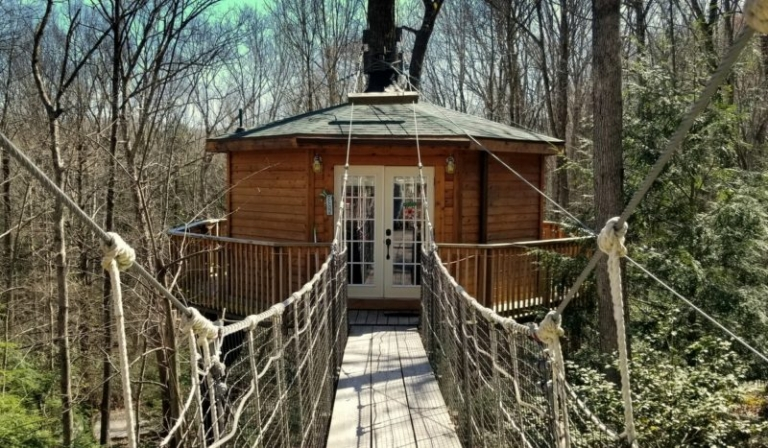 Second treehouse opens for guests near New River Gorge