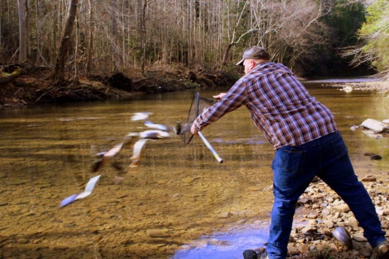 West Virginia governor announces new trout-stocking pattern
