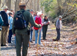 Rangers lead a wildflower hike in the New River Gorge National River.