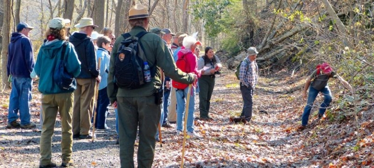Parks to host 16th annual New River Gorge Wildflower Weekend