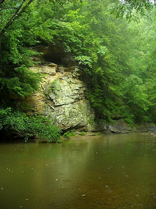 Strange Creek wanders through the forests of central West Virginia to meet the Elk River.