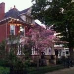 Wells House on Main Street