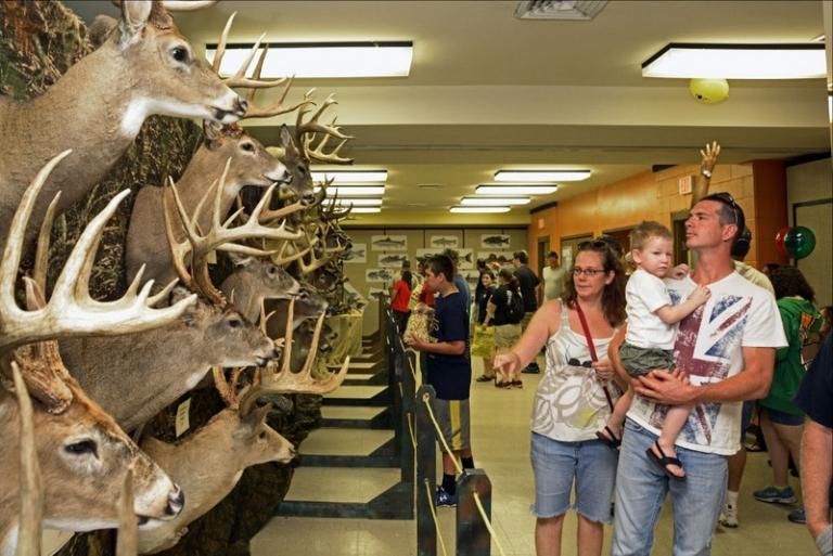 W.Va. DNR seeks big bucks and trophy fish for displays