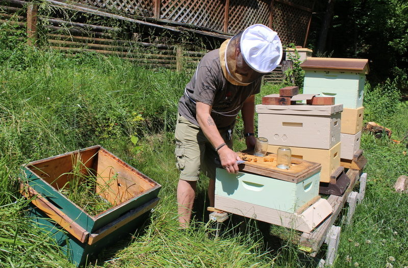 A West Virginia veteran has opened an apiary service.