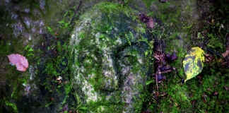 An enigmatic stone face carved into mossy sandstone along the rim of the New River Gorge is attracting increased attention.