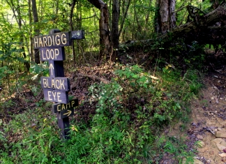 Trail signs stand near an entrance to the Sand Hill Wildlife Management Area near Mountwood Park in Ritchie County.