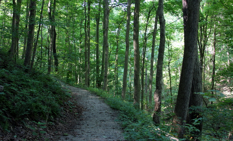 Hundreds of hikers visit the trail system annually at Bethany College.