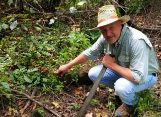 David Sibray inspects stonework in a thicket near the old saltworks.