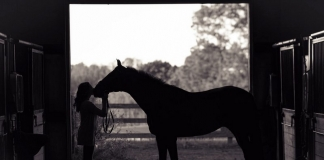 Horses endangered by Hurricane Dorian are being admitted to West Virginia.