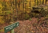 The White Hollow Trail descends through Kanawha State Forest near Charleston, West Virginia.