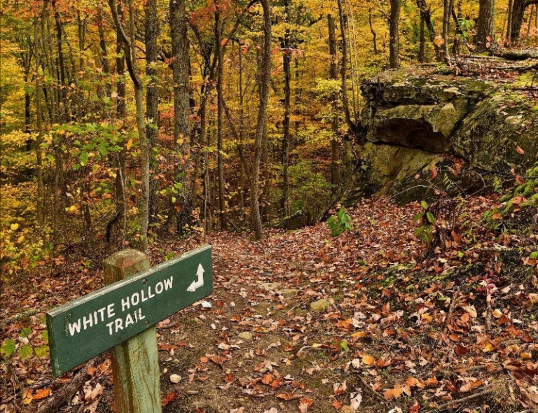 Six West Virginia parks to offer guided autumn hikes