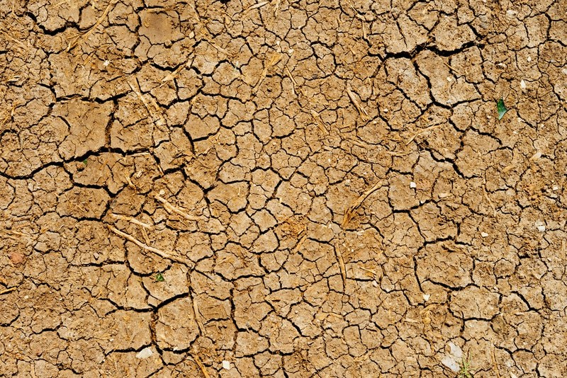 According to National Integrated Drought Information System, 18.7 percent of West Virginia is now considered under D2 (severe drought) status.