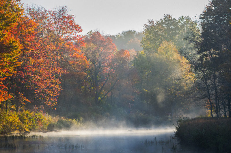 Morning mist rises off the Blackwater River in the Little Canaan Wildlife Management Area.