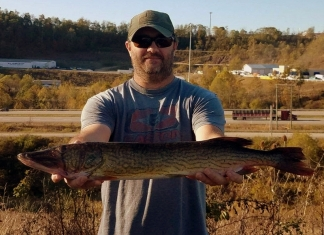 Matt Born displays the state record chain pickerel taken in 2019 at Upper Deckers Creek Lake.