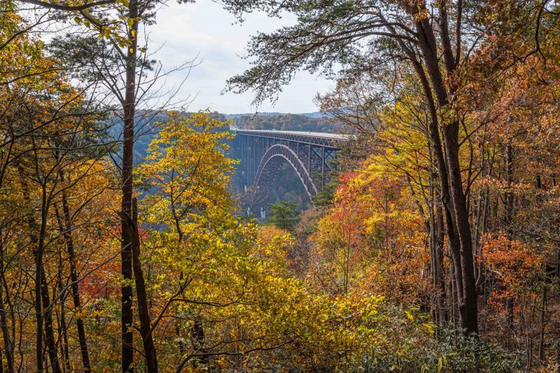 The New River Gorge Bridge arches across the forest near Fayetteville in Fayette County.
