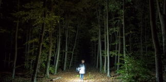 A ghost hunter roams a West Virginia forest.