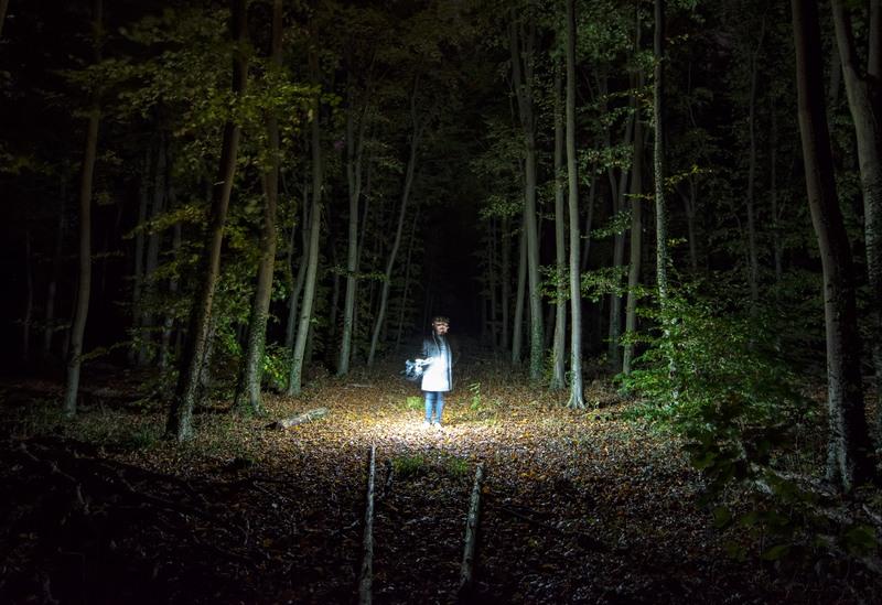 A ghost hunter roams a West Virginia forest.