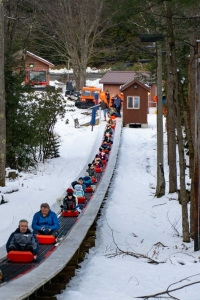 Sledders ride to the top of the run at Blackwater Falls State Park.