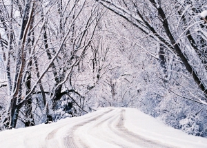 Snow blankets a country road through a woodland in West Virginia.