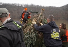 Fisheries biologists are using Christmas trees to create fish habitat.