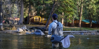 An angler casts into scenic Paint Creek, hidden just out of site of Interstates 64 and 77.