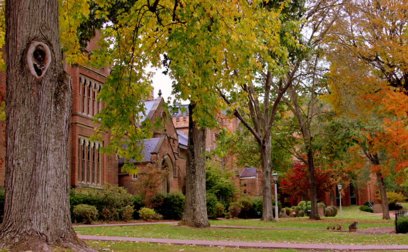 Landmark trees shade the campus at Bethany College near the school's old-growth Parkinson Forest.