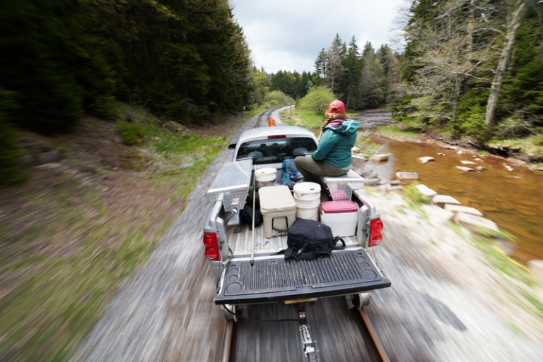 Trout stocking provides opportunity for year-round fishing