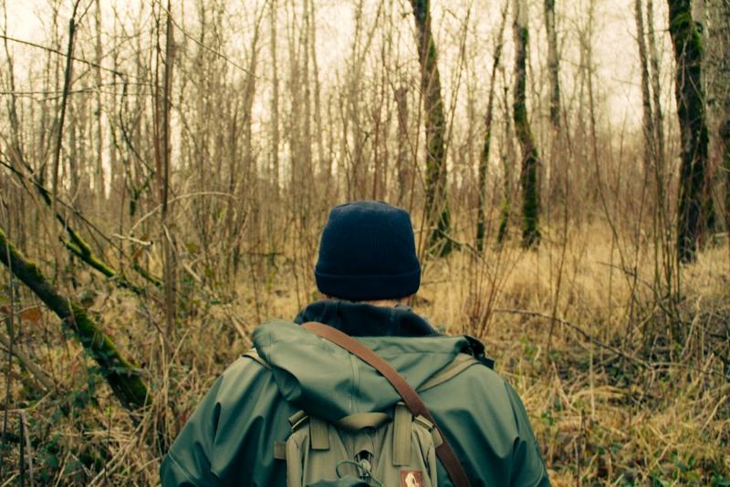 A wildlife biologist surveys a glade in West Virginia.