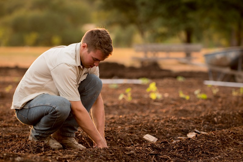 Through October the lunch-and-learn series look at gardening in West Virginia.