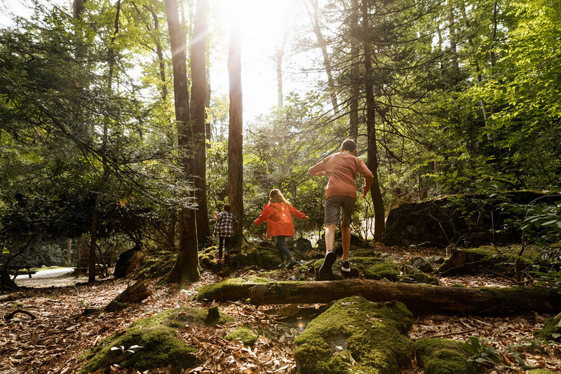 Children frolic during a Green Day Hike, now a landmark spring in event in West Virginia State Parks.